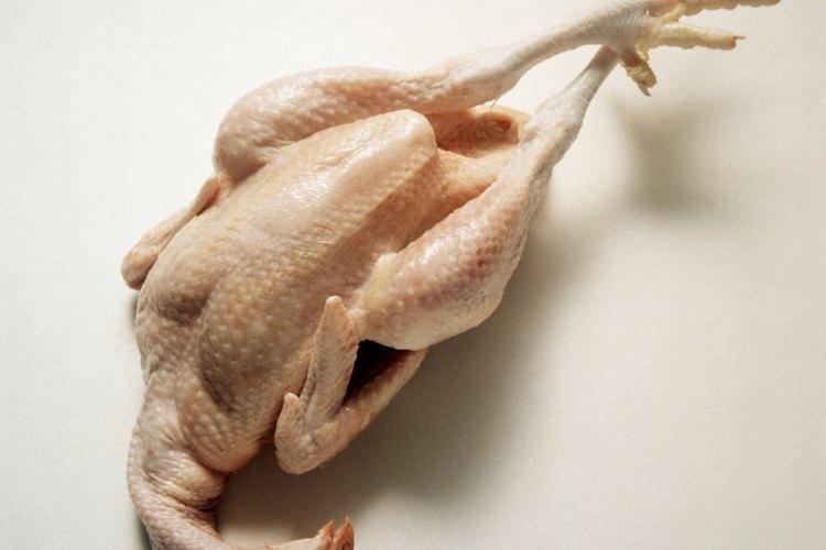 Escaldar los pollos antes del eviscerado facilita la tarea de quitarles las plumas.