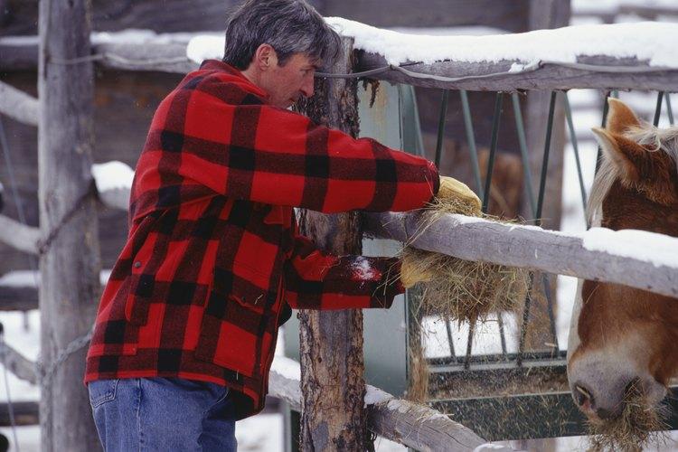 Una caja de heno es una solución para zonas de mal tiempo