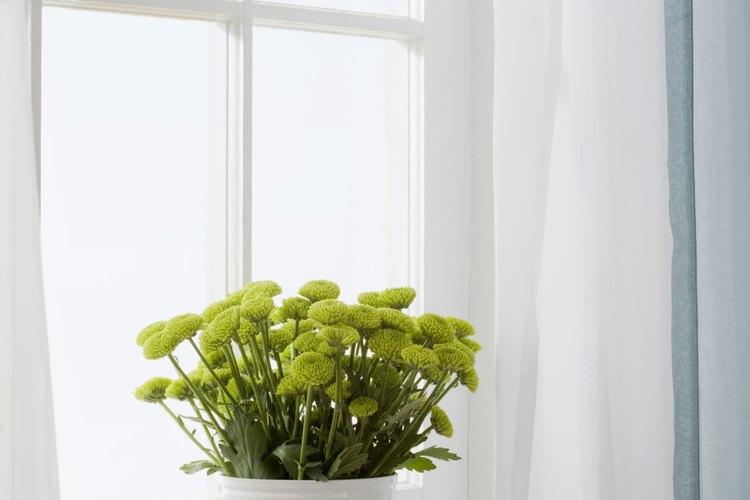 Cómo aplicar masilla para vidrios en la ventana |