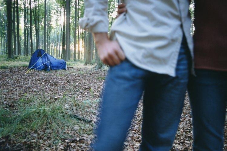 Acampa en los altos pinos de Canyon Point Campground.