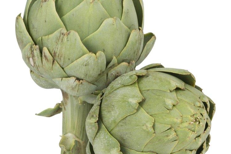 Las hojas de alcachofa son en realidad bractas que rodean la estructura interior de la flor.