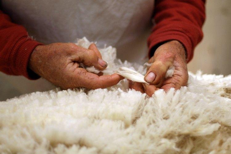 Se recoge la lana para eliminar la gran suciedad y separar los mechones antes de cardar.