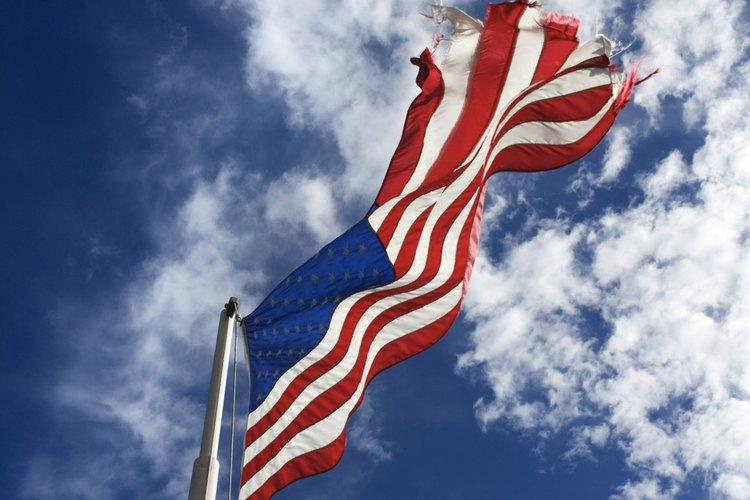 Las estructuras sociales de Estados Unidos se desarrollan y cambian según el lenguaje, las normas y los valores comunes.