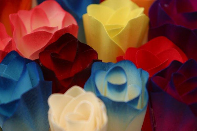 Todas las plantas absorben tinte al ser colocadas en agua con colorante de alimentos.