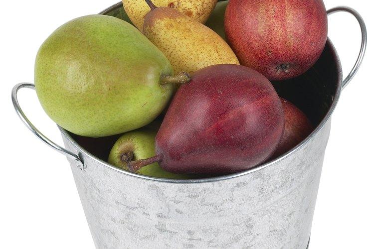 Maneja la fruta cuidadosamente durante la cosecha para evitar dañarlas.