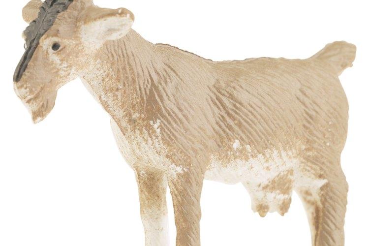 Financiamientos a la industria de productos de cabra.