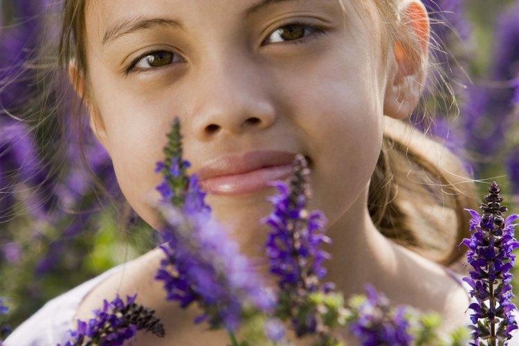 Usa flores de temporada para hacer guirnaldas y adornos para el cabello.