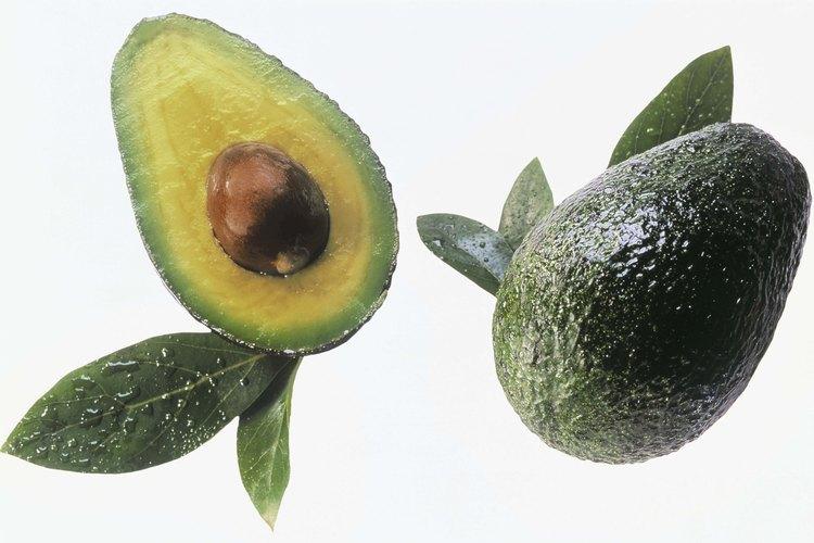 Por lo general, el aguacate Hass comienza a dar frutos unos tres años después de la plantación.