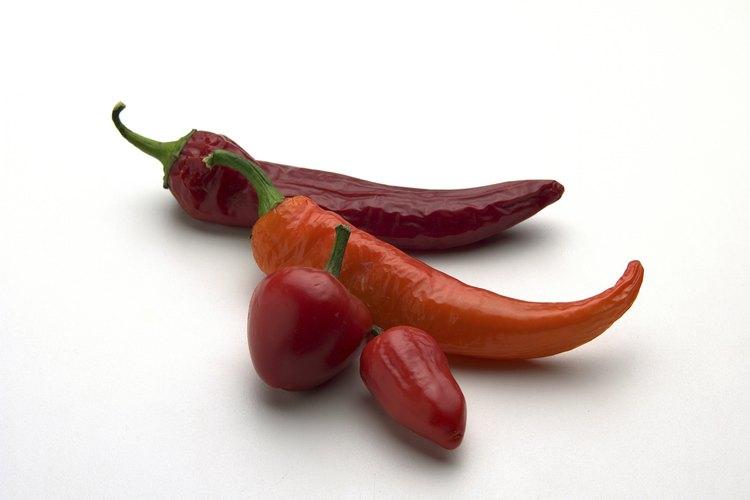 Corea del Norte y del Sur, Bután, India y México son sólo algunos de los países que usan muchos chiles en su cocina.