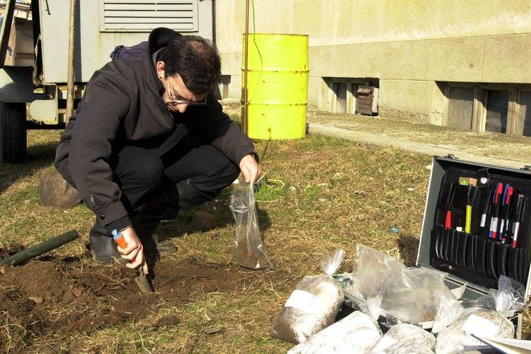 Cada planta requiere un tipo de suelo.