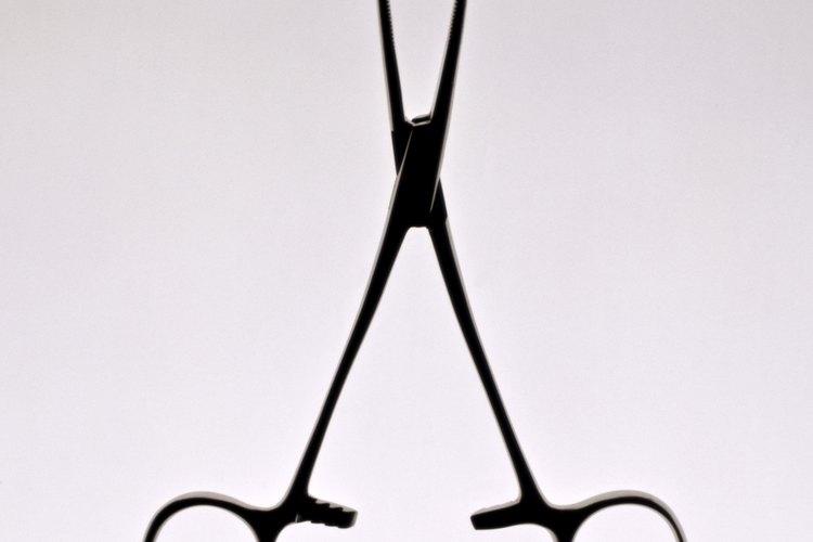 Usa una tijera para cortar las hojas de la espinaca trepadora.