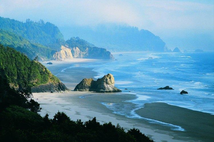 Disfruta del hermoso paisaje de Lane County, en Oregon.