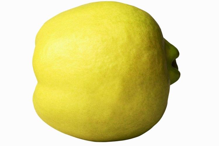 El membrillo es una fruta antigua que se relaciona con las manzanas y las peras.
