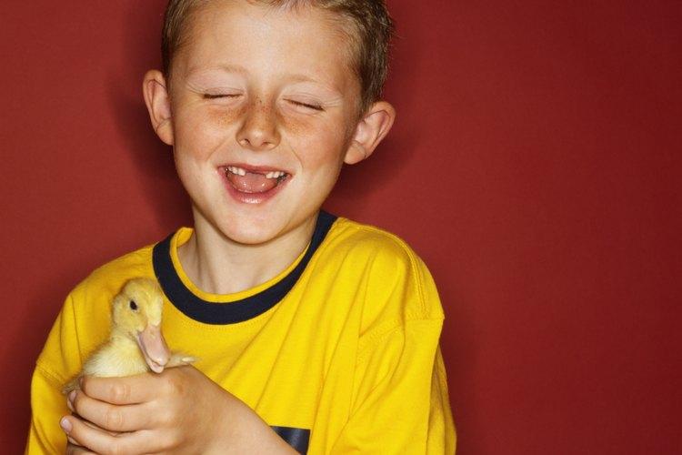 Los pájaros a menudo pueden desencadenar ataques de asma.