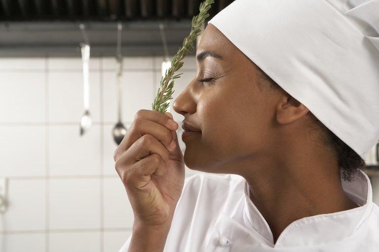 Antes de convertirte en chef debes saber los puntos básicos.
