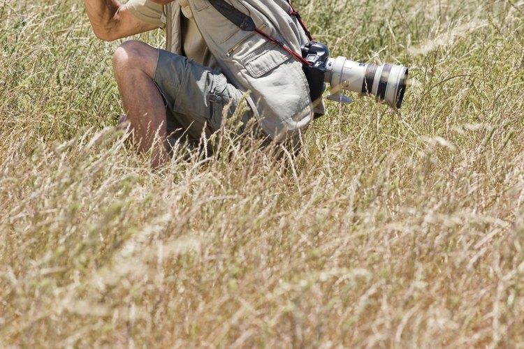 Fotógrafo independiente tomando fotos en su trabajo.