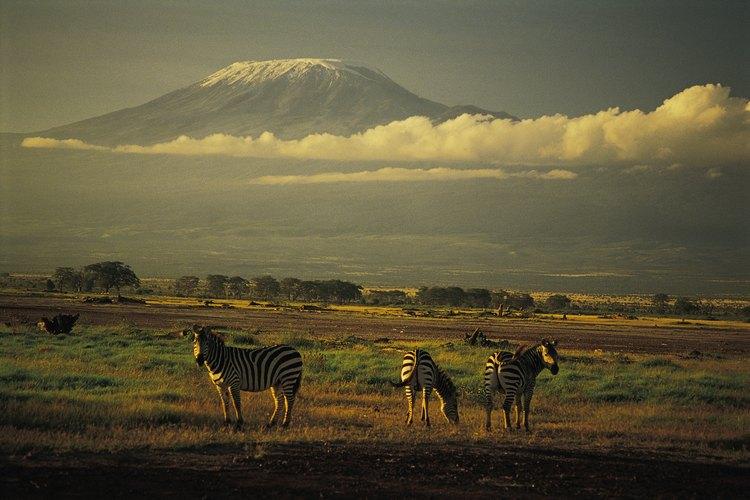 El Kilimanjaro sobre las nubes puede resultar un ascenso demasiado difícil para muchos.