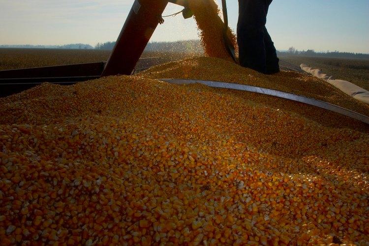 Los arrendatarios agrícolas trabajan las granjas de otros propietarios para un beneficio mutuo.