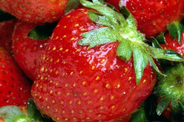 Las fresas son una fruta popular en los huertos familiares.