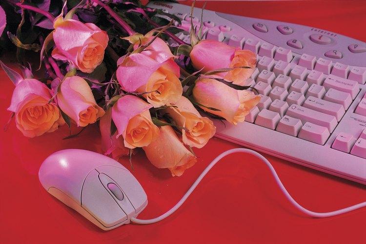 Una variedad de vendedores en línea se especializan en vender plantas y arbustos.