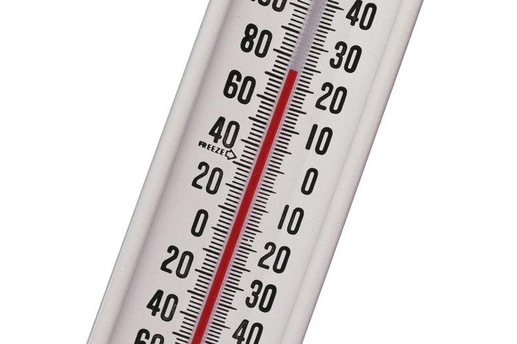 El moho requiere ciertas temperaturas para crecer.
