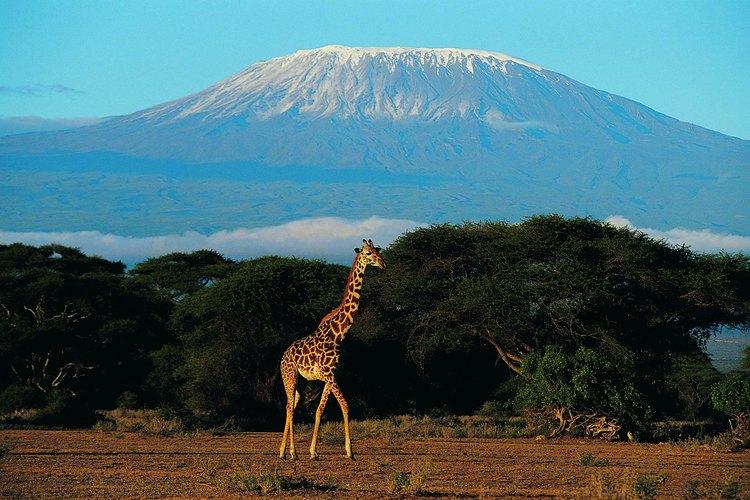 Los glaciares del monte Kilimanjaro atraen a miles de visitantes cada año.