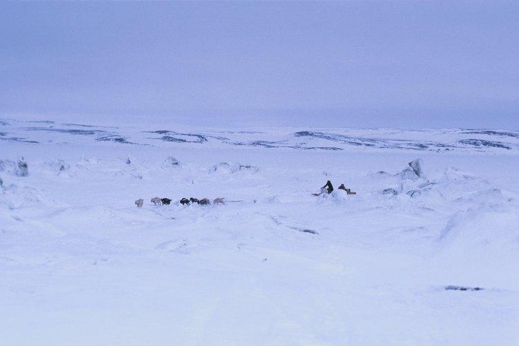 Los Inuit sobrevivieron en el frío extremo.