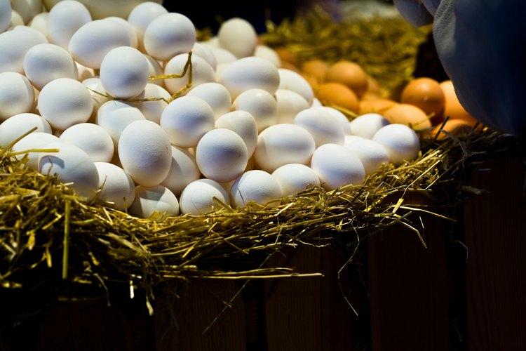 Claras de huevo con vegetales picados.
