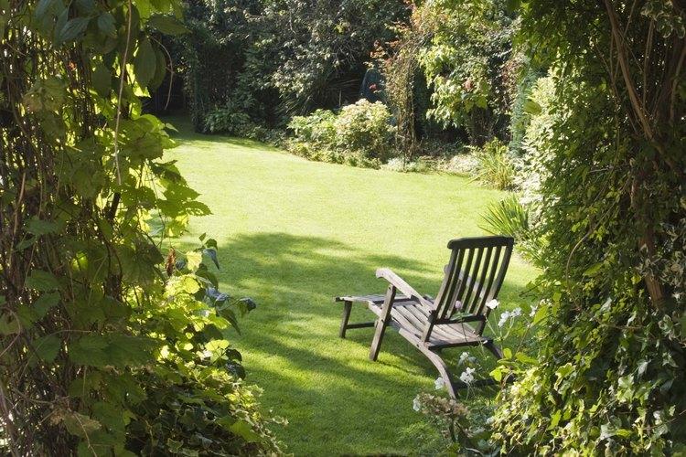 Un arco cubierto de follaje es encantador para la entrada de un jardín.
