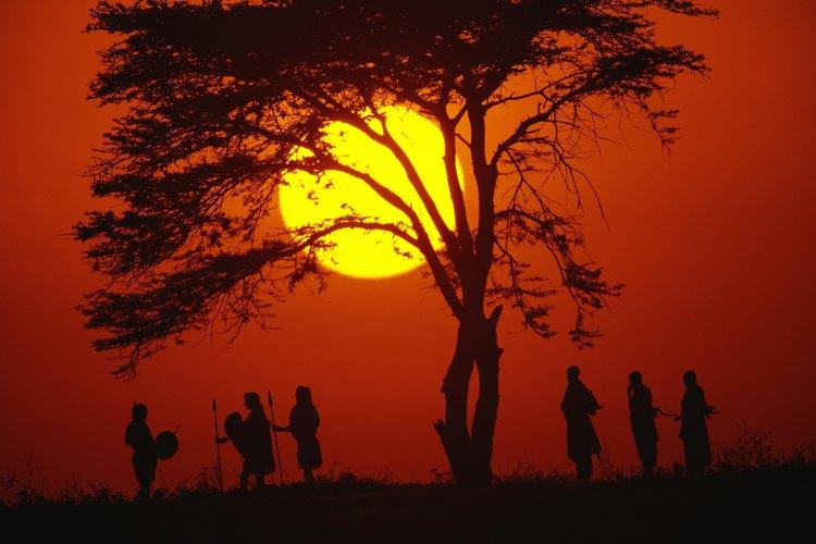 El árbol de acacia es uno de los símbolos más emblemáticos de los pastizales.
