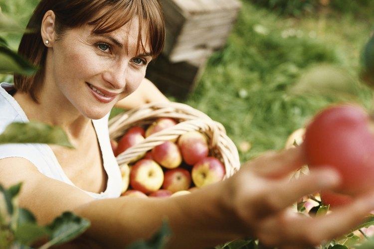 Diviértete haciendo un disfraz de manzana.