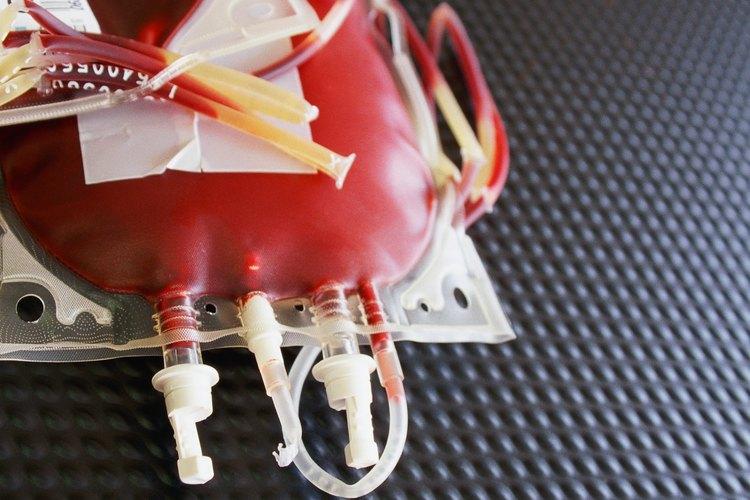 Una campaña de donación de sangre es una actividad altruista.