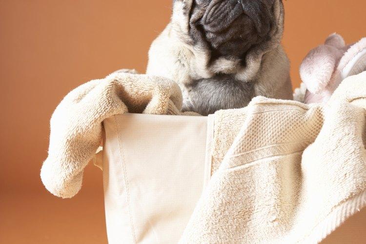 Usa una toalla para absorber el exceso de agua.