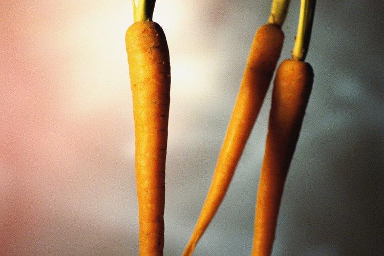 Las zanahorias no se pueden cultivar de manera hidropónica.