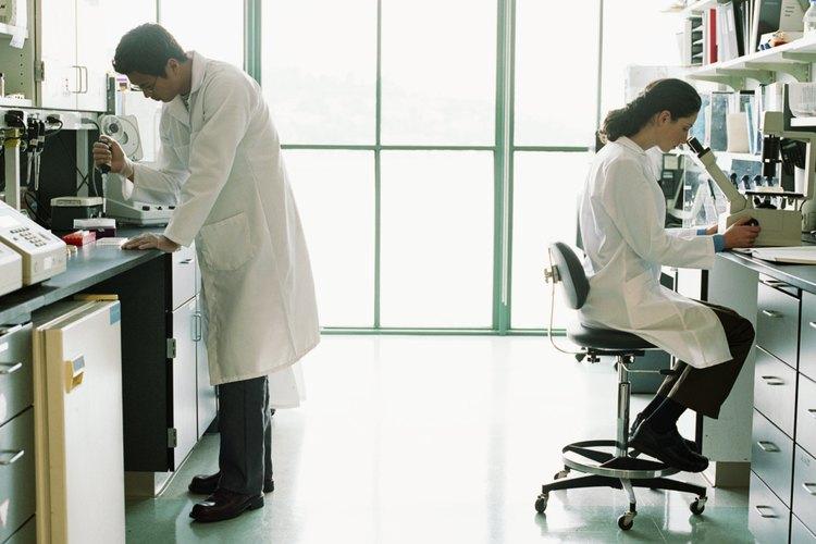 La catalasa se ha estudiado ampliamente, ya que está presente en todos los organismos vivos.