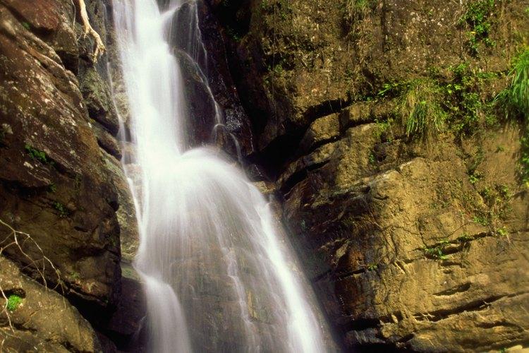 La cascada de la Mina fluye a través de la Reserva Nacional El Yunque.