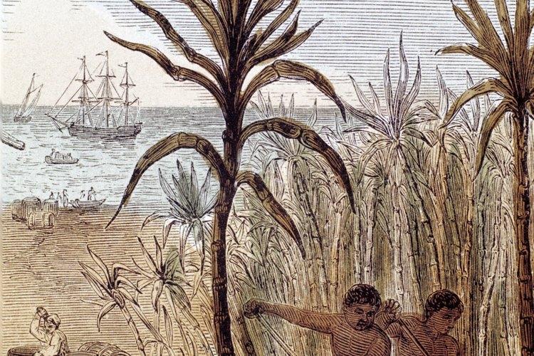 Los esclavos fueron secuestrados o vendidos a cambio de objetos de valor.