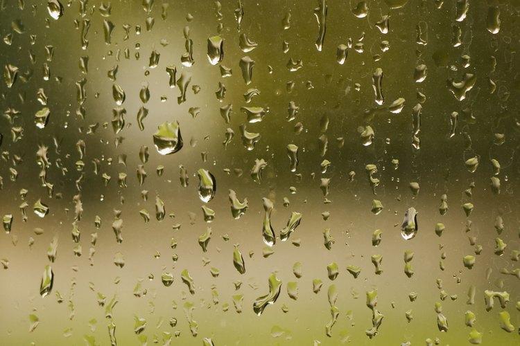 Si la condensación no se elimina diariamente, puede causar una putrefacción.