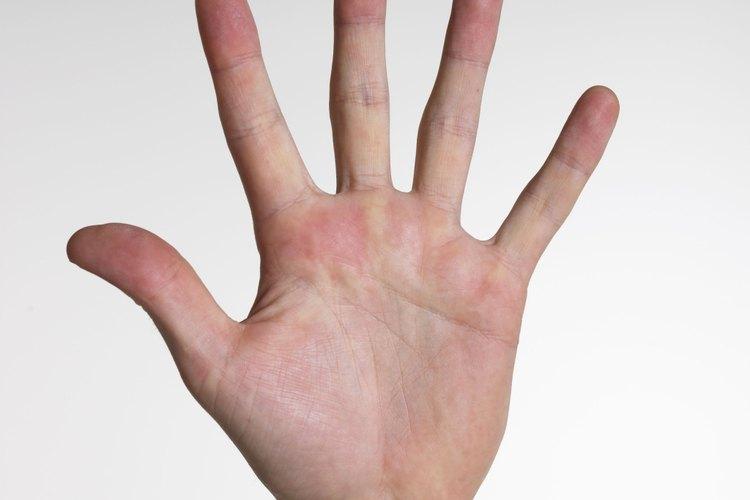 Nombres de los dedos de izquierda a derecha: el pulgar, el dedo índice, dedo medio, dedo anular y el dedo meñique.
