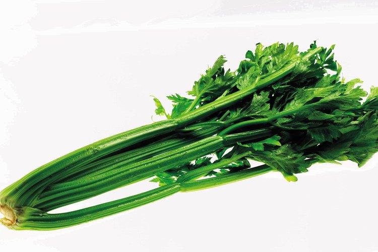 El apio es una adición sabrosa y nutritiva para las sopas y guisos.