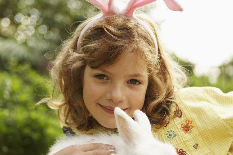 Los conejos blancos de Florida son conejos albinos.