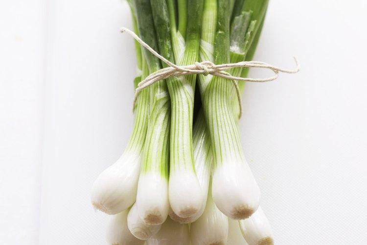 La cebolla verde es un buen aditivo para ensaladas y estofados.
