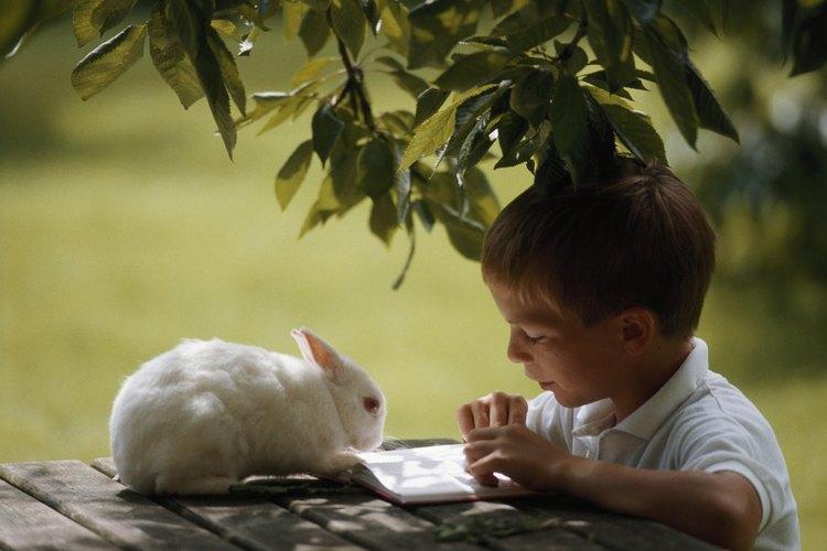 Los conejos son criaturas interesantes que pueden fascinar a los niños.