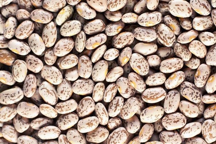 Los frijoles pinto se encuentran entre las legumbres que más gases producen.