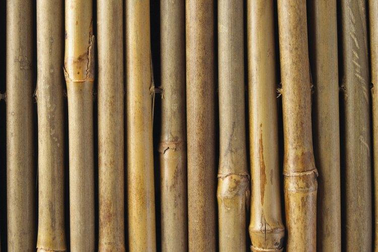 Las cañas de bambú se utilizan para muchos propósitos en el jardín.