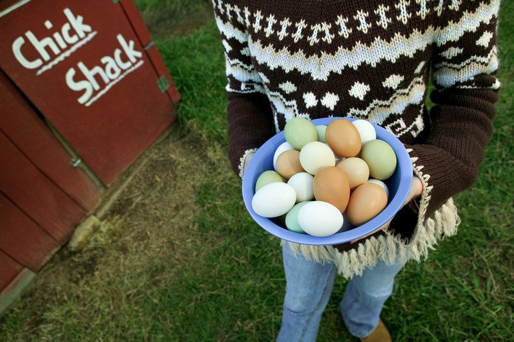 Los huevos de gallina vienen en colores variados.