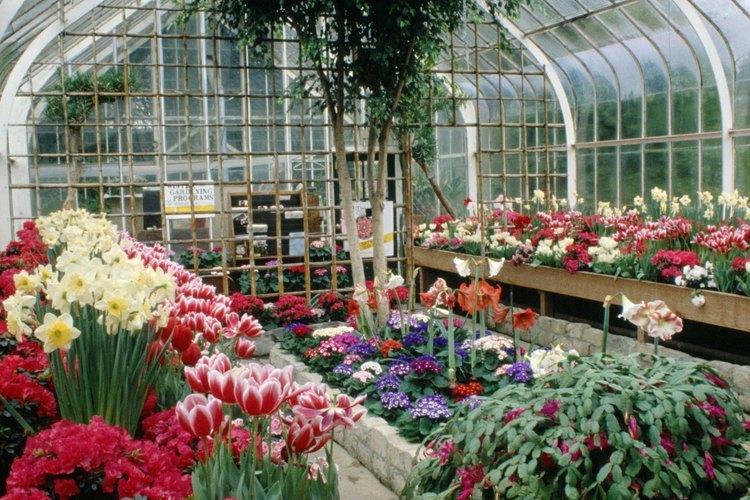 Mantener a un invernadero caliente es importante para las plantas de adentro.