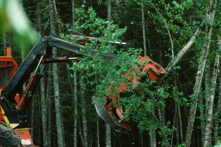 El acto de destruir y eliminar las propiedades antiguas y abandonadas por lo general implica el uso de una excavadora de gran tamaño.