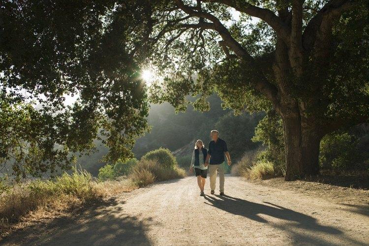 Sal a pasear en un lugar tranquilo y natural para obtener un tiempo especial con un ser querido.