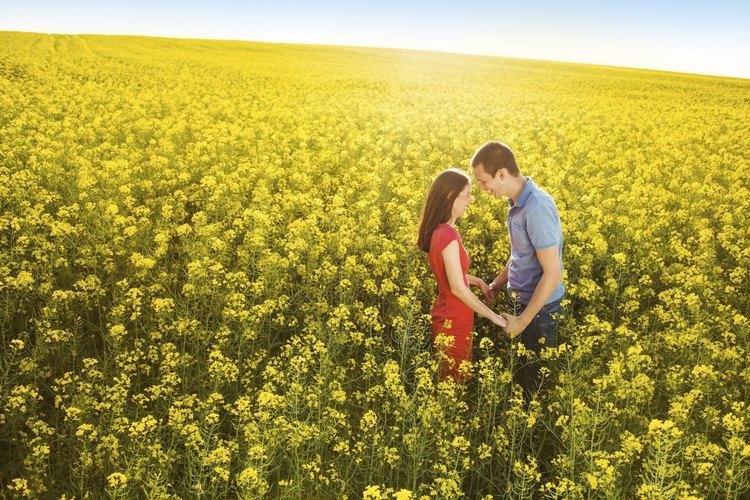 El afecto no es sinónimo de posesión.